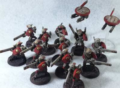 Tau Fire Warrior Team